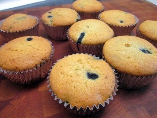 Otis Spunkmeyer Wild Blueberry Muffins Reduced-Fat copycat recipe by Todd Wilbur
